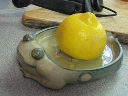 frog & lemon