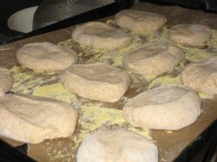 rising dough rounds